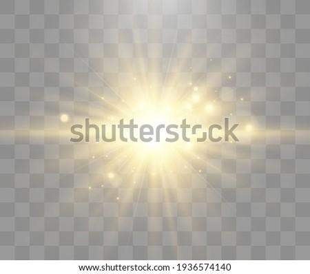 bright beautiful starvector