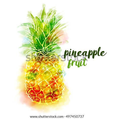 bright color pineapple fruit