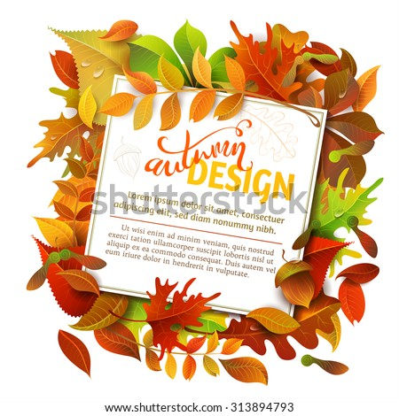 bright fall background