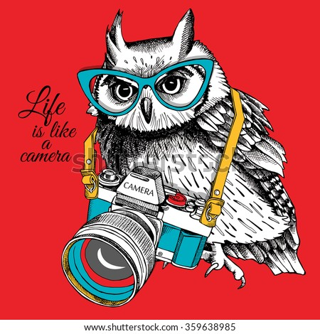 bright poster owl in glasses