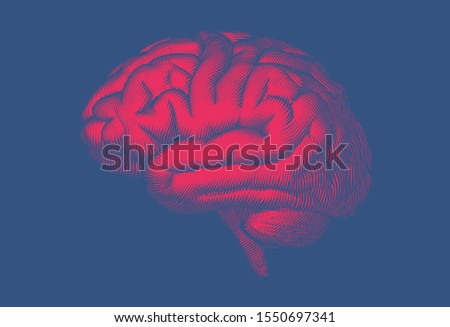 Bright red engraved vintage drawing human brain side view woodcut glyph style illustration isolated on deep blue background