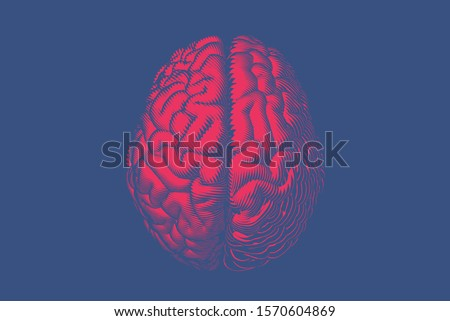 Bright red glyph engraved drawing human brain top view in woodcut hard line style vector illustration isolated on deep blue background