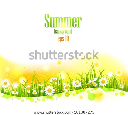 bright summer flowers