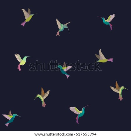 bright vector birds
