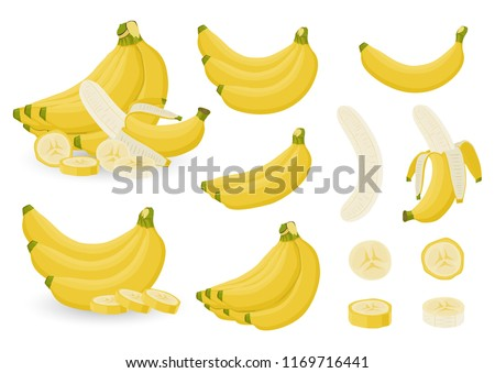 Bright vector set of bunches of fresh banana and slices of bananas. Sweet Yellow cartoon single, peeled banana and bunch of bananas isolated on white background.