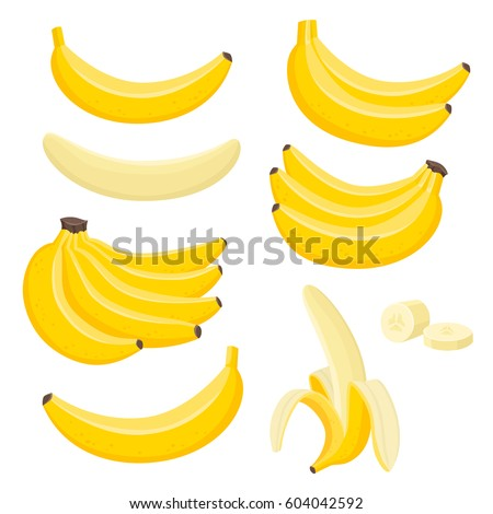 Bright vector set of bunches of fresh banana. Sweet cartoon single, peeled banana and bunch of bananas isolated on white background.