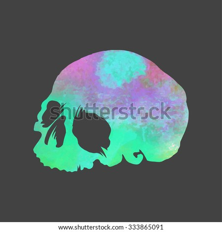 bright watercolor vector skull