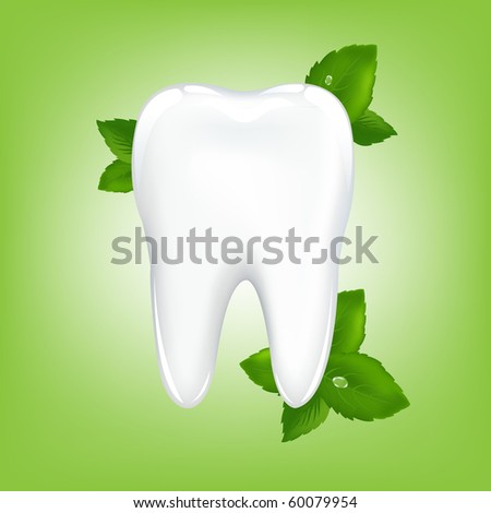 Brilliant White Tooth With Mint, On Green Background, Vector Illustration - stock vector
