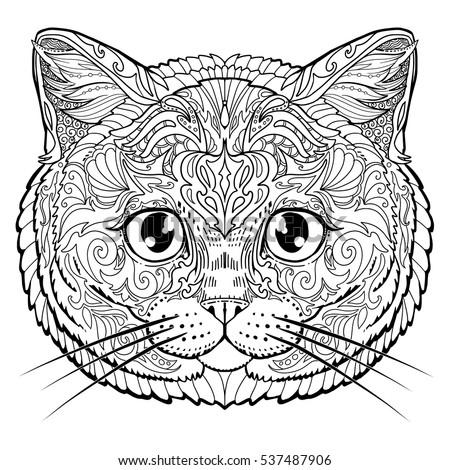 british cat face doodle