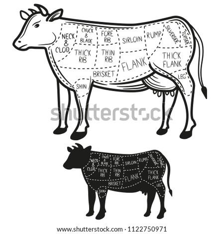 Cow Beef Diagram