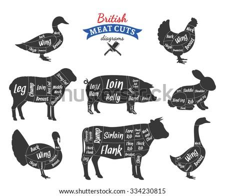 Turkey Butchery Diagram - Electrical Work Wiring Diagram •