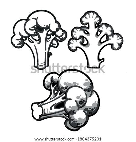 3vdnffnqrgepvm https flyclipart com search broccoli