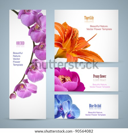 Brochure design, orchid flower vector template