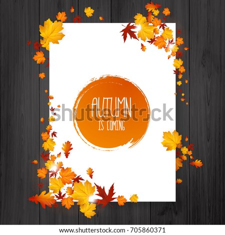 brochure with autumn leaves
