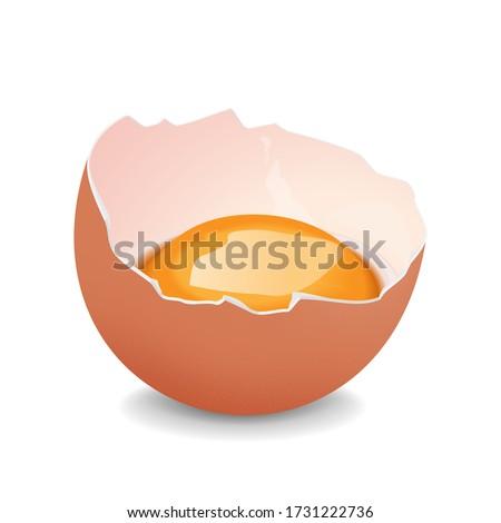 Broken egg with yolk. Realistic vector Сток-фото ©