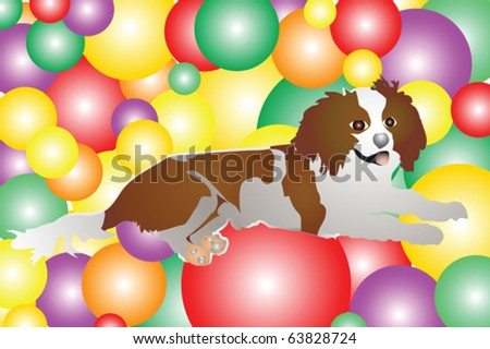 brown and white dog on colorful balls