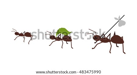 brown ant carrying her baggage