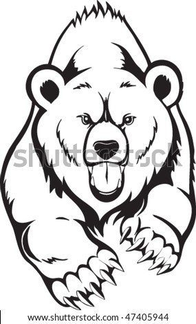 brown bear grizzly vector