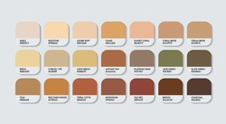 Brown Color Guide Palette. Catalog Samples cream and brown with RGB HEX codes. metal color palette Vector, wood color palette