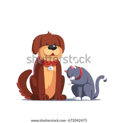 brown fluffy dog pet with red