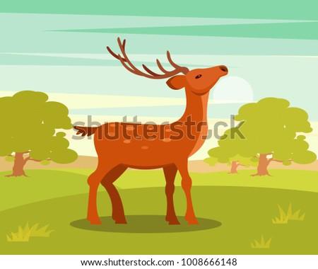 brown graceful spotted deer