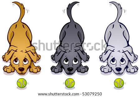 Brown, gray, and white dogs wagging their tails with tennis balls in front of them.