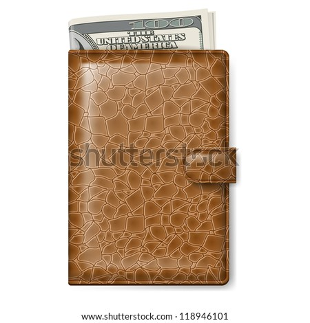 Brown Leather wallet with Dollars. Illustration on white background