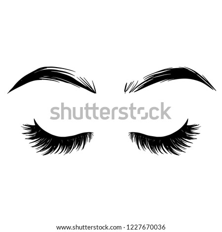 6281142053e ... Stock-vector-brows-and-lashes-vector-illustration-beautiful- ...