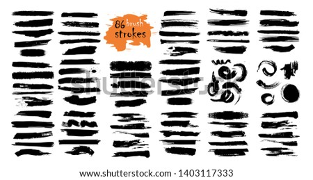 Brush strokes hand drawn vector illustration - Vector.