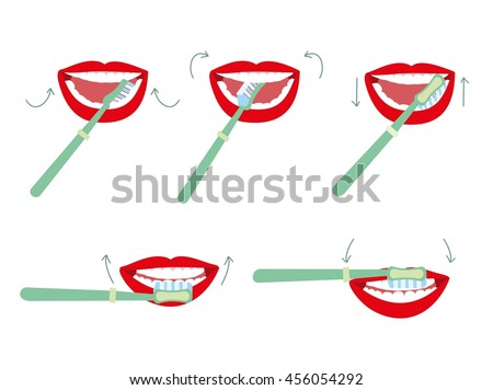 Brushing tooth vector illustration. How to brush your teeth rightly guide. Correct tooth brushing with  using  toothbrush.