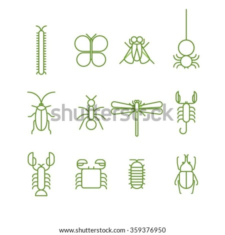 bug icons   arthropods icons