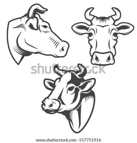 bull head emblem isolated on