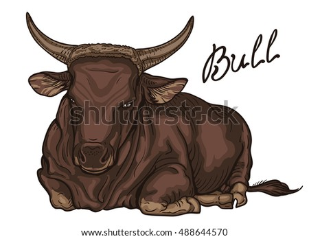 bull image big male of