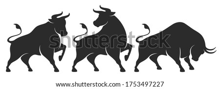 Bull set. Stylized silhouettes of standing in different poses and butting up bulls. Isolated on white background. Bull logo designs set. Vector illustration.