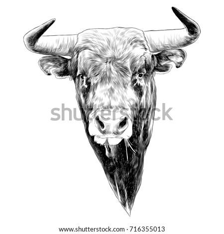 bull sketch vector graphics black and white monochrome figure head