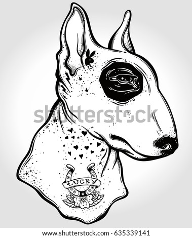 bull terrier's portrait made in ...