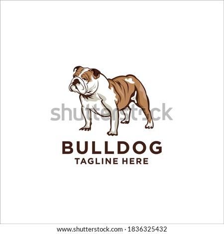 Bulldog logo design icon vector silhouette Stock photo ©