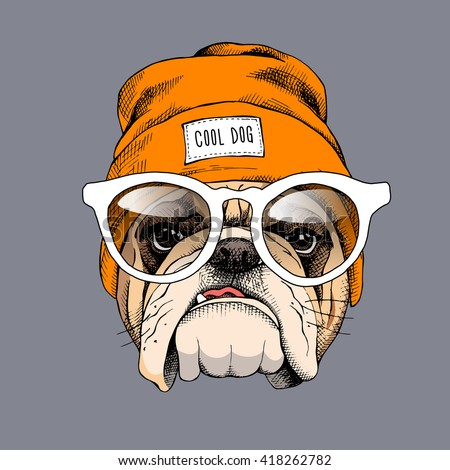 bulldog portrait in a hipster