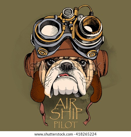bulldog portrait in a steampunk