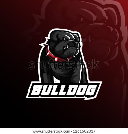 bulldog vector mascot logo design with modern illustration concept style for badge, emblem and tshirt printing. angry bulldog illustration.