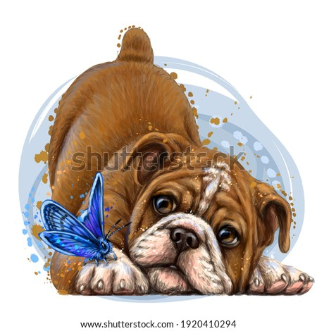 bulldog wall sticker color