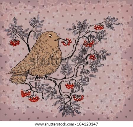 bullfinch and mountain ash background, beautiful retro vector illustration