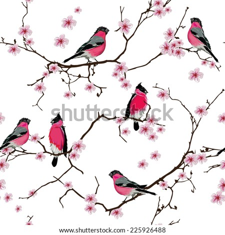 bullfinches on the sakura