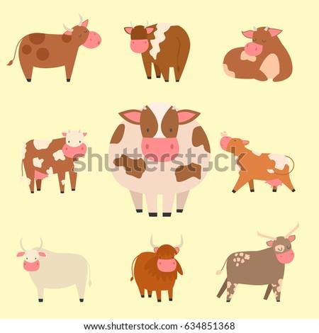 bulls cows farm animal