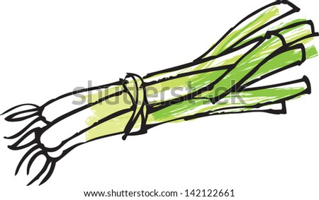 Go Back  gt  Gallery For  gt  Green Onion SketchGreen Onion Sketch