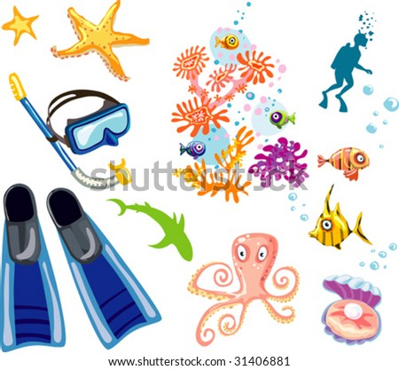 Bunch of scuba diver and  snorkel equipment
