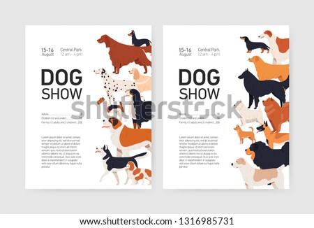 Bundle of flyer or placard templates for conformation dog show with adorable doggies of different breeds and place for text. Colored vector illustration in flat cartoon style for event invitation