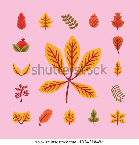 bundle of twenty five autumn