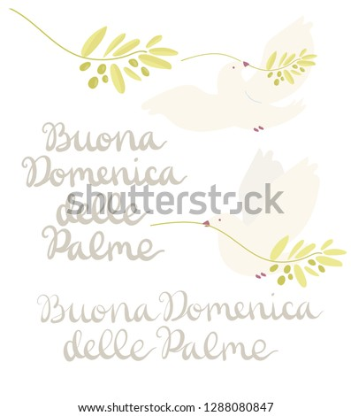 Buona Domenica delle Palme - Happy Palm Sunday - set with handwritten lettering and white dove flying with olive branch isolated on white. Hand drawn vector in mimal style.