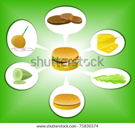 Burger and its ingredients are shown in the picture. - stock vector
